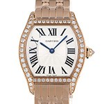 cartier other wa501010